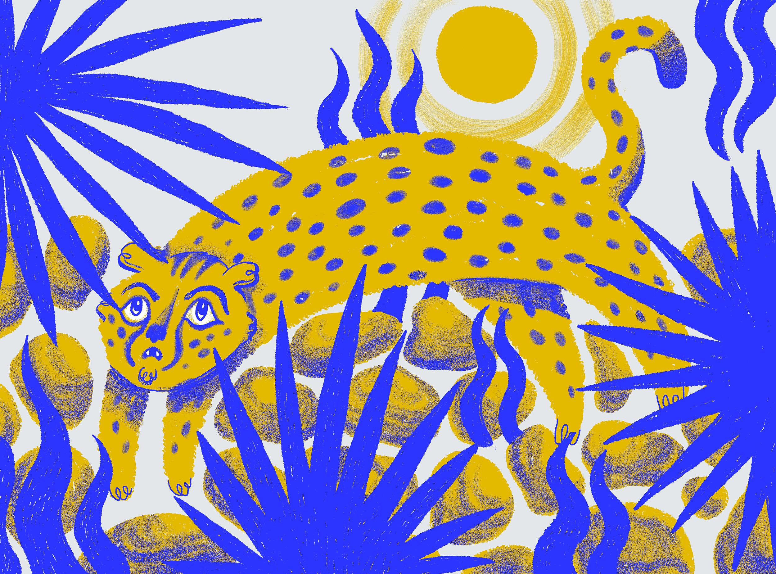 BC_Cheetah