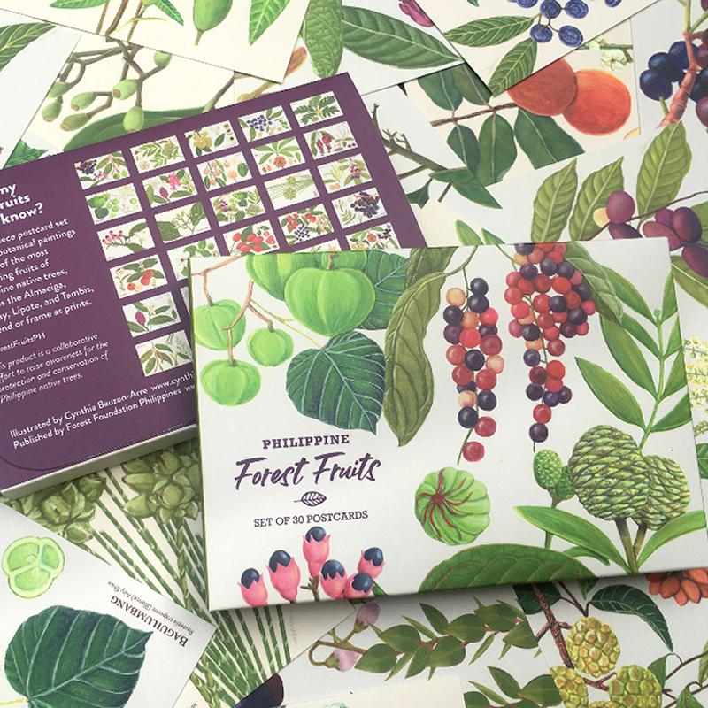 Girlsclub-Asia-cynthia-bauzon-arre-Philippine-Forest-Fruits-postcard-set