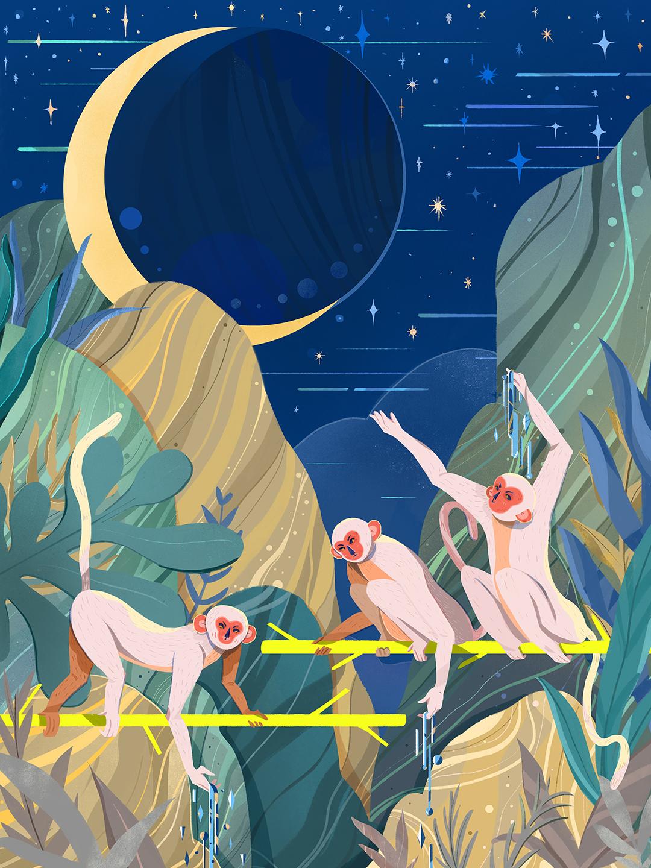 Girlsclub-Asia-Jianan-Liu-Monkeys Grasp for the Moon