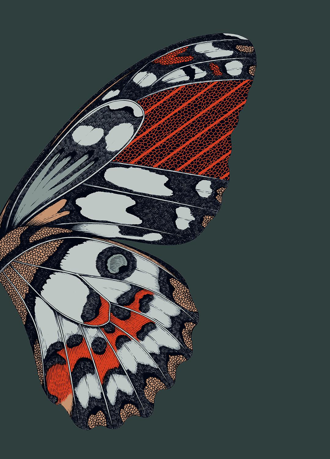 GirlsclubAsia-Artist-Suthipa Kamyam-rs_Artwork_Butterfly_Color1